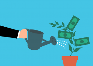 Investing and Gardening